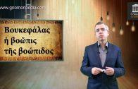ΕΠΕΙΣΟΔΙΟ 10 – ΤΟ ΒΛΟΓΗΜΕΝΟ ΜΑΝΤΡΙ (ΦΩΤΗΣ ΚΟΝΤΟΓΛΟΥ)
